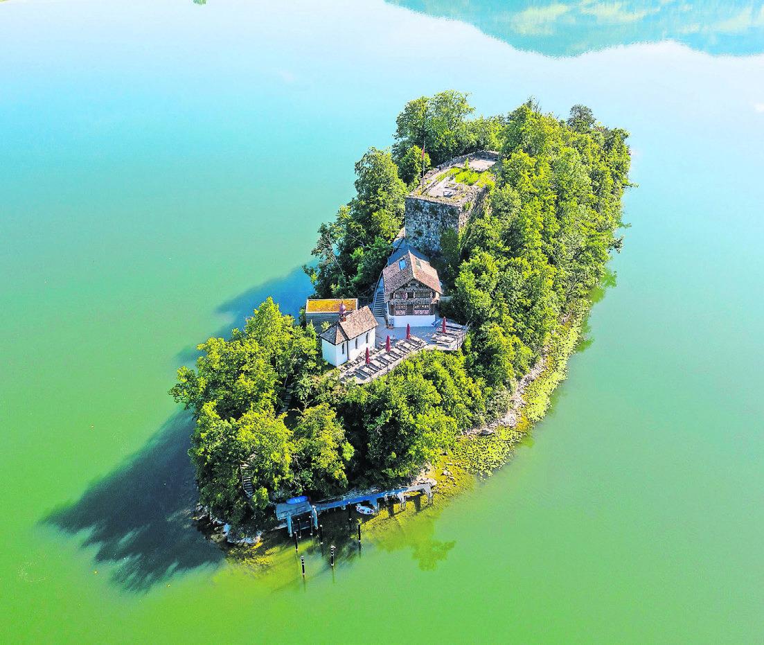 Für die Insel Schwanau rückt eine einvernehmliche Lösung näher