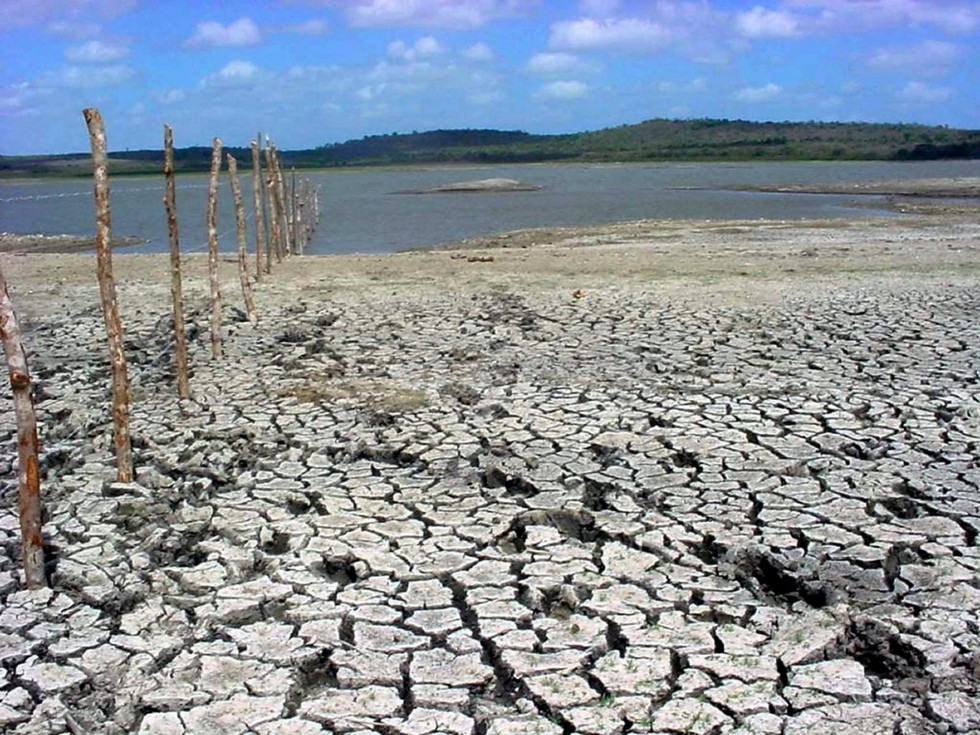 Agricoltura-Coldiretti: i danni di ondate di calore e siccità